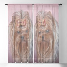 Drawing breed Yorkshire Terrier dog Sheer Curtain