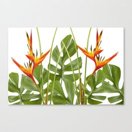2 Exotic Flowers Helikonias and Monstera white Canvas Print