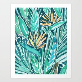 TROPICAL BIRDS OF PARADISE Art Print