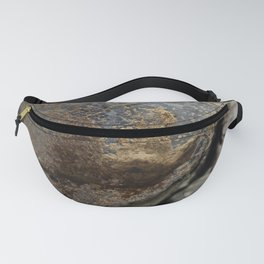 The abstract art of Mother Nature Fanny Pack