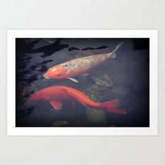 Koi Fish Art Print