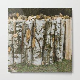 Birch wood - natural pattern Metal Print