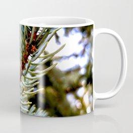 Blue Spruce Spring Growth 1 Coffee Mug