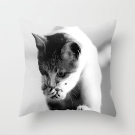 CAT OR SQUIRREL Throw Pillow