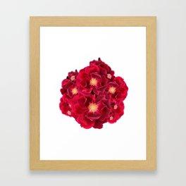 Floral Ink Framed Art Print
