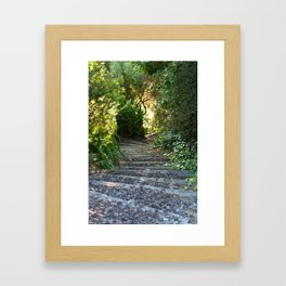 Down the Garden Path Framed Art Print