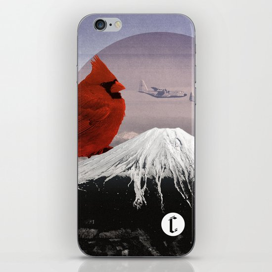 Mountain Song iPhone & iPod Skin