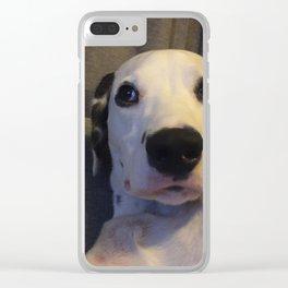 Skeptical Dalmatian Clear iPhone Case