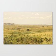 Western Valley Canvas Print