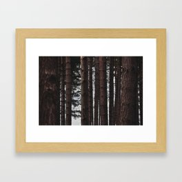 Through the Trees - Nature Photography Framed Art Print