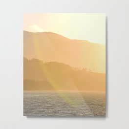 Warm Alaskan Forest Sunset Metal Print