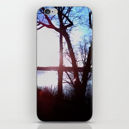 Hocking Hills iPhone Skin