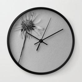 black and white daisy Wall Clock