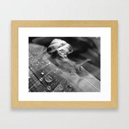 D J Framed Art Print