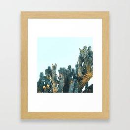 Teal Cactus Framed Art Print