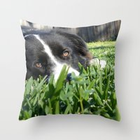 border collie Throw Pillows featuring Thoughtful Border Collie by elledeegee