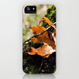 Lone Orange Leaf iPhone Case