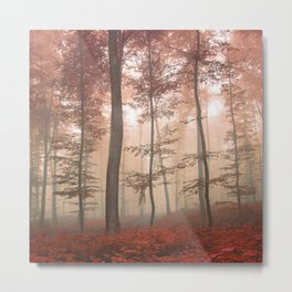Misty Autumn Forest Metal Print