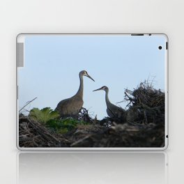 Sandhill Crane pair Laptop & iPad Skin
