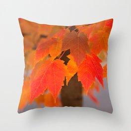 Autumnal Epitome Throw Pillow