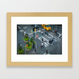 Bird's Eye Framed Art Print