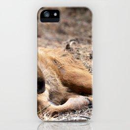 Watercolor Moose Calf 05, Smålandet Moose Safari, Markaryd, Sweden, Leggy Baby iPhone Case