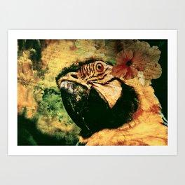 Perroquet  Art Print