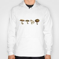 mushrooms Hoodies featuring Mushrooms by Marilyn Foehrenbach Illustration