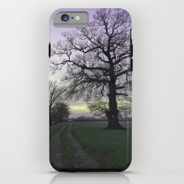 evening light... iPhone Case