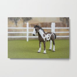 The Little Painted Pony Metal Print