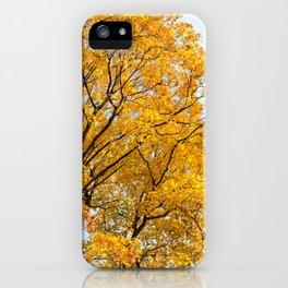 Yellow leaves autumn trees iPhone Case