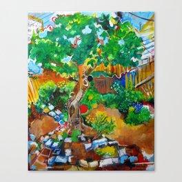 Backyard Fig Tree Canvas Print