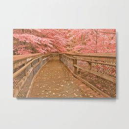 Catoctin Boardwalk Trail - Rustic Pastel Fantasy Metal Print
