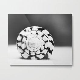 Black and White Seashell Photography, Shell Photo, Neutral Beach Art, Black White Coastal Photo Metal Print