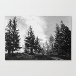 Zeitgefluester NO1 Canvas Print