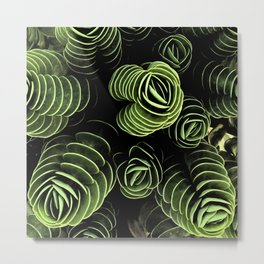 So Succulent Metal Print
