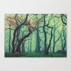 Tall Tree Tales Canvas Print