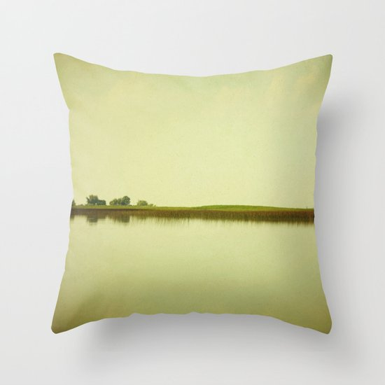State of Wonder Throw Pillow