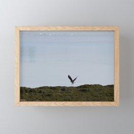 Osprey In Flight on the Ocean Framed Mini Art Print