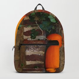 Gourds On A Windowsill Backpack