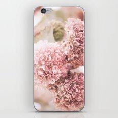 dusty pink iPhone & iPod Skin
