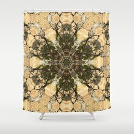 Ch'in Pacha Shower Curtain