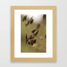 Macro flower 7 Framed Art Print