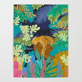 Sleeping Panther Poster