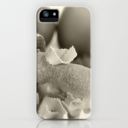 Pasta in our own production iPhone Case