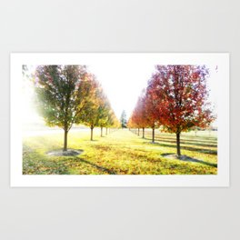Autumn Fall Trees : Center of Attention Art Print