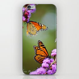 Butterfly Royalty iPhone Skin