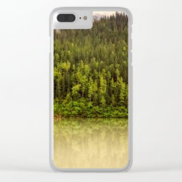 When You're Driftwood Clear iPhone Case