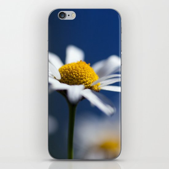 Marguerite Daisy3609 iPhone & iPod Skin