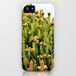 Cactus at Telde, Gran Canaria iPhone Case